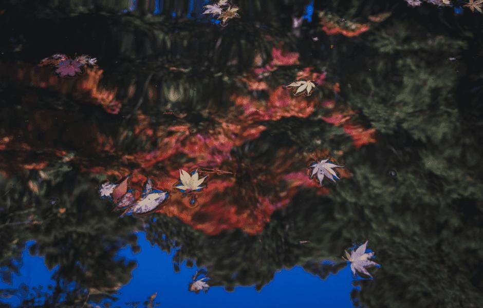 平安時代…中央政権とも強くつながり発展を迎えた諏訪神社