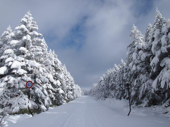 【2020-2021】メルヘン街道・ビーナスライン・八島高原線 冬季通行止め情報まとめ